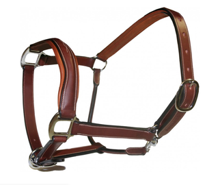 Antares Halter And Leadrope Set
