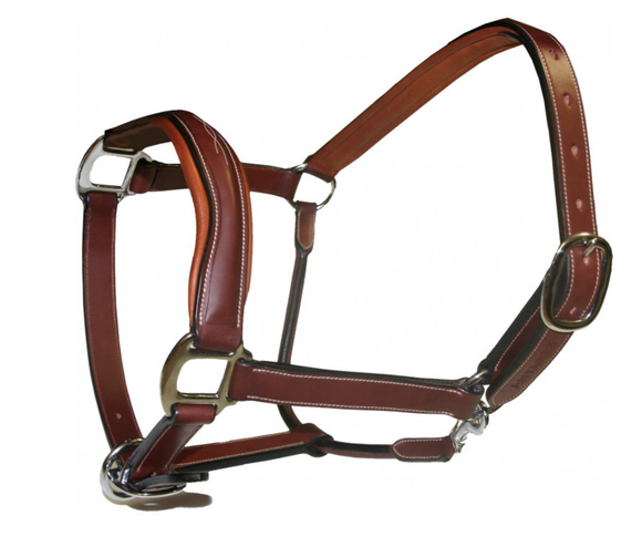 Antares Leather Halter