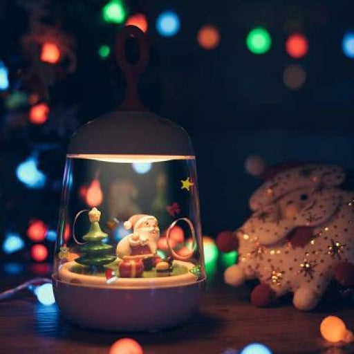 Gift Christmas Micro Landscape Plant Light - XpressGoods