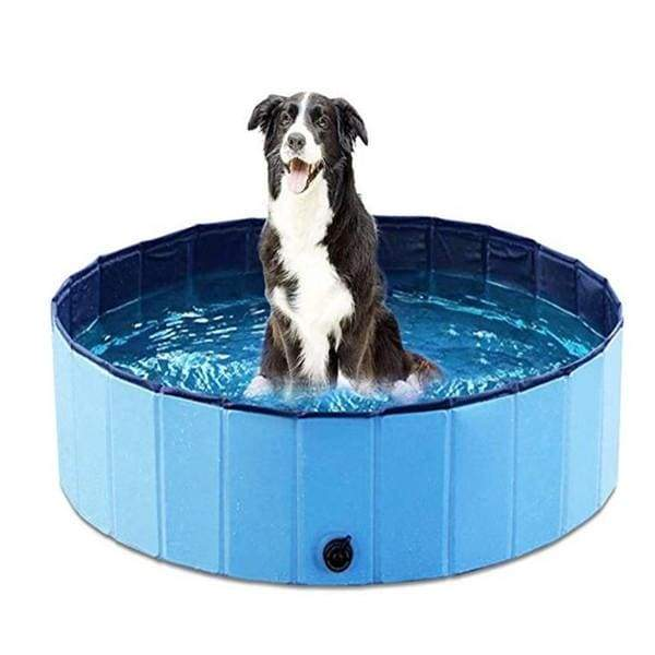 Foldable Pet Dog Swimming Pool - Blue / M - pets collections
