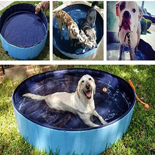 Foldable Pet Dog Swimming Pool - Blue / XL - pets