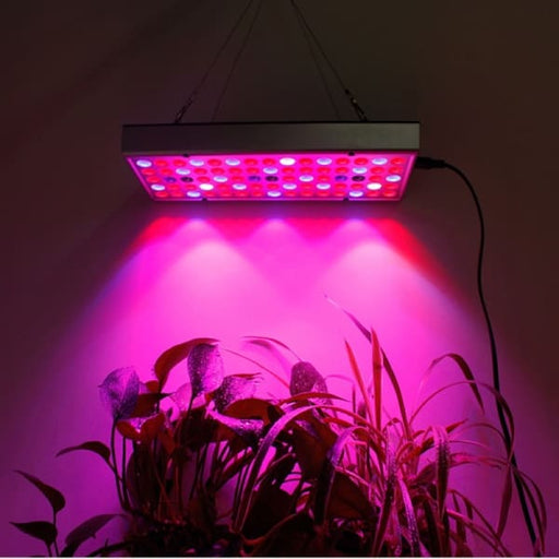 LED Grow Lights for Indoor Plants Micro Greens Seedlings -