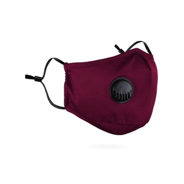 PM 2.5 Adult Face Mask W/ Ear Clip - BURGUNDY - Beauty &