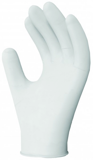 Vinyl Disposable Gloves - Powder Free