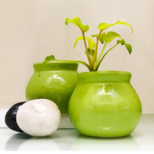 Load image into Gallery viewer, Glazed Lime Mini Planter