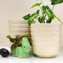 Load image into Gallery viewer, Ceramic Tumbler Planter