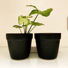 Load image into Gallery viewer, Matte Black Planter