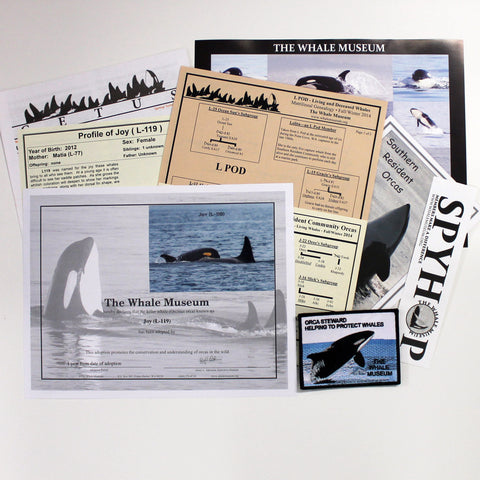 Whale Museum Exclusives