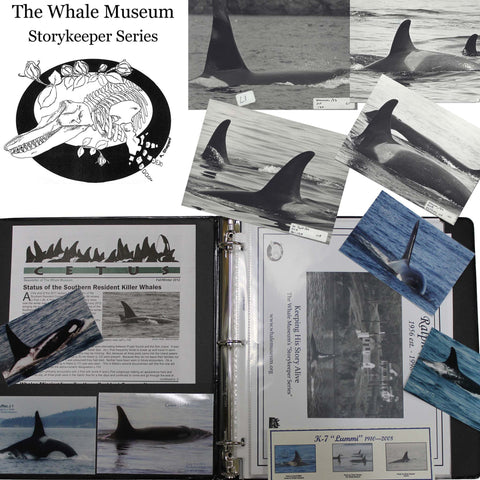 The Whale Museum's Storykeepers Series