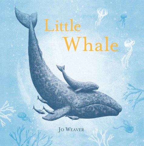 Little Whale, hardcover book