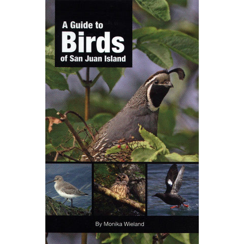 A Guide To Birds Of Sji