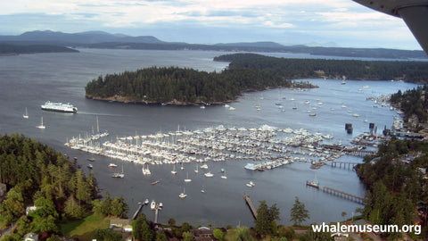 Friday Harbor Arial Background