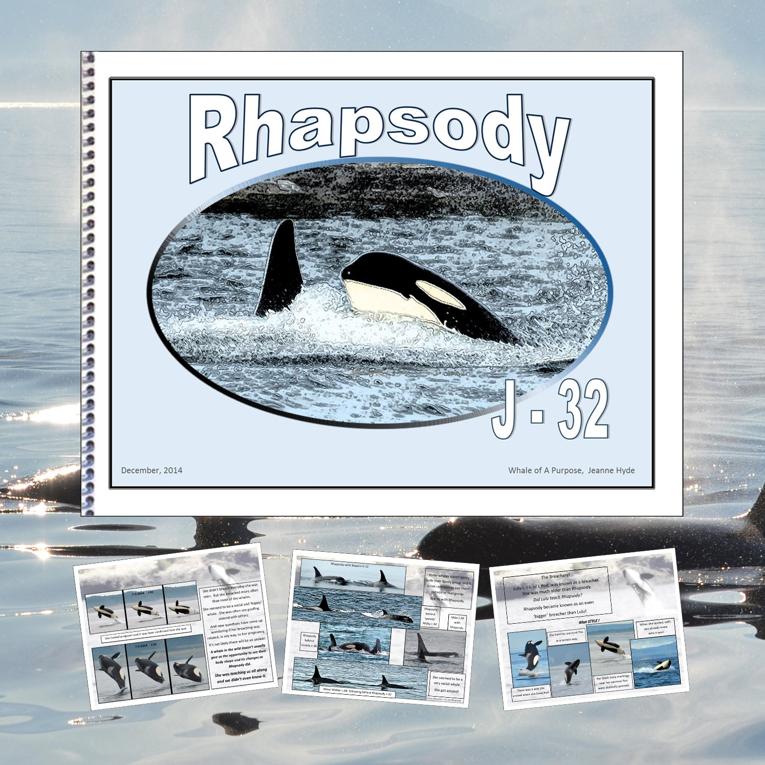 A Glimpse Into the life of Rhapsody (J-32)