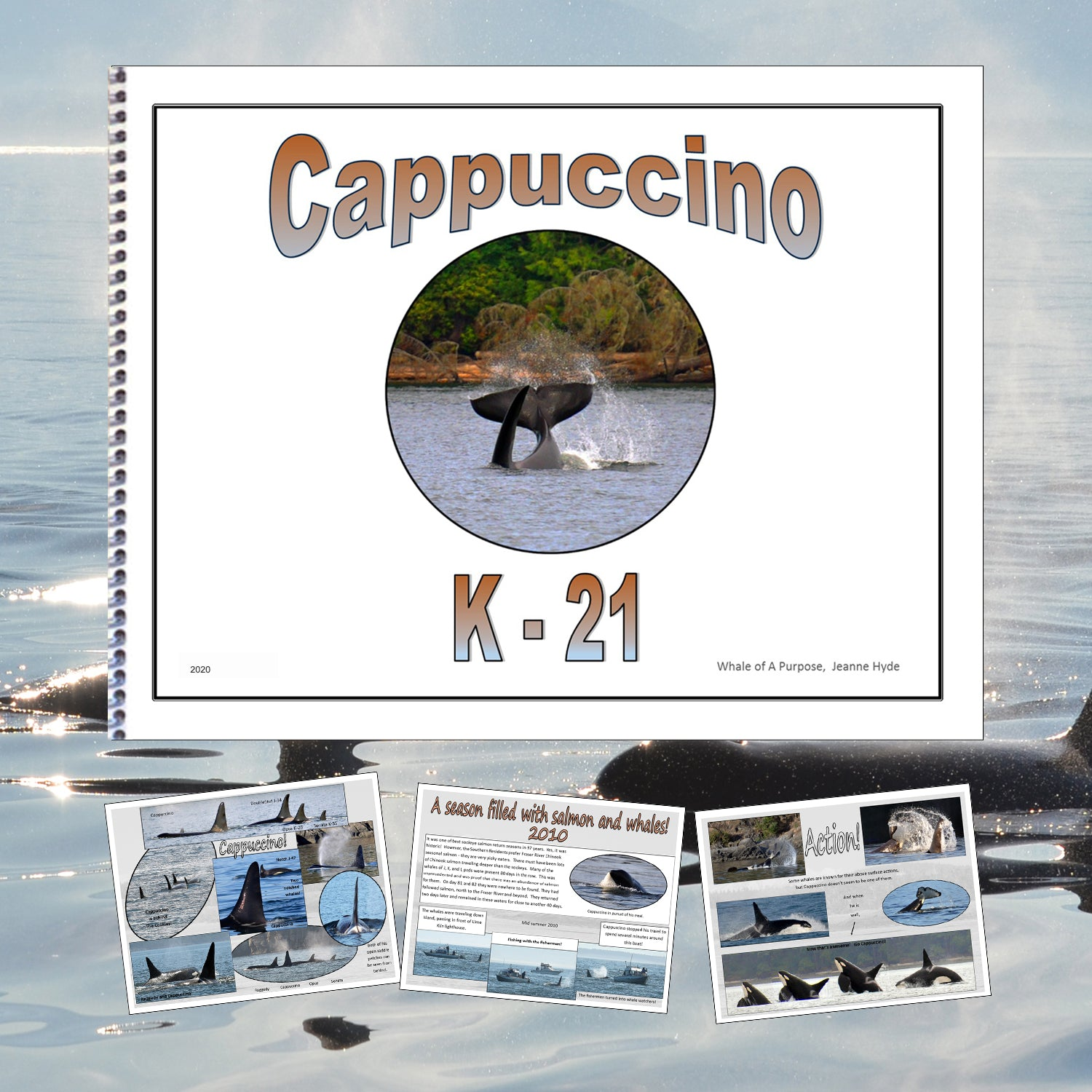 A Glimpse Into the Life of Cappuccino (K-21)