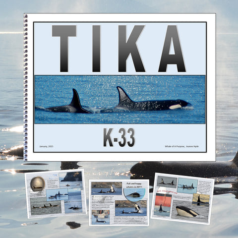 A Glimpse Into the Life of Tika  (K-33)