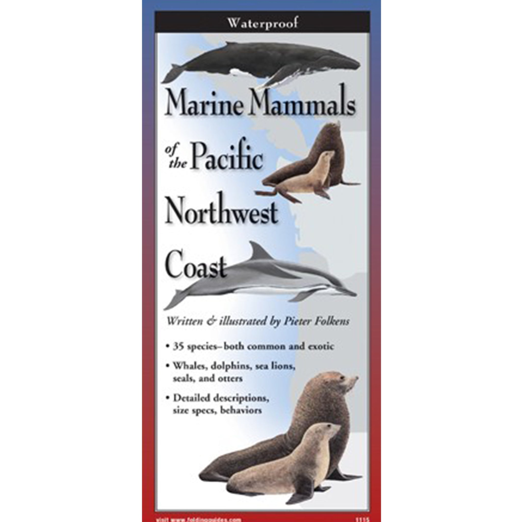 Marine Mammals of the Pacific Northwest Coast Folding Guide