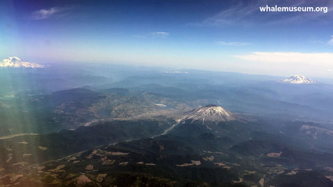 Mt. St. Helens from a Plane Background