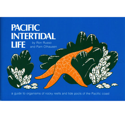 Pacific Intertidal Life