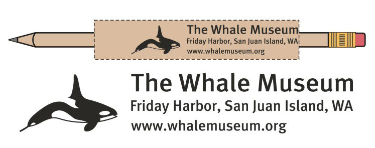 The Whale Museum Pencil
