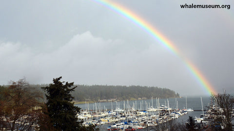 Rainbow Over Friday Harbor Background