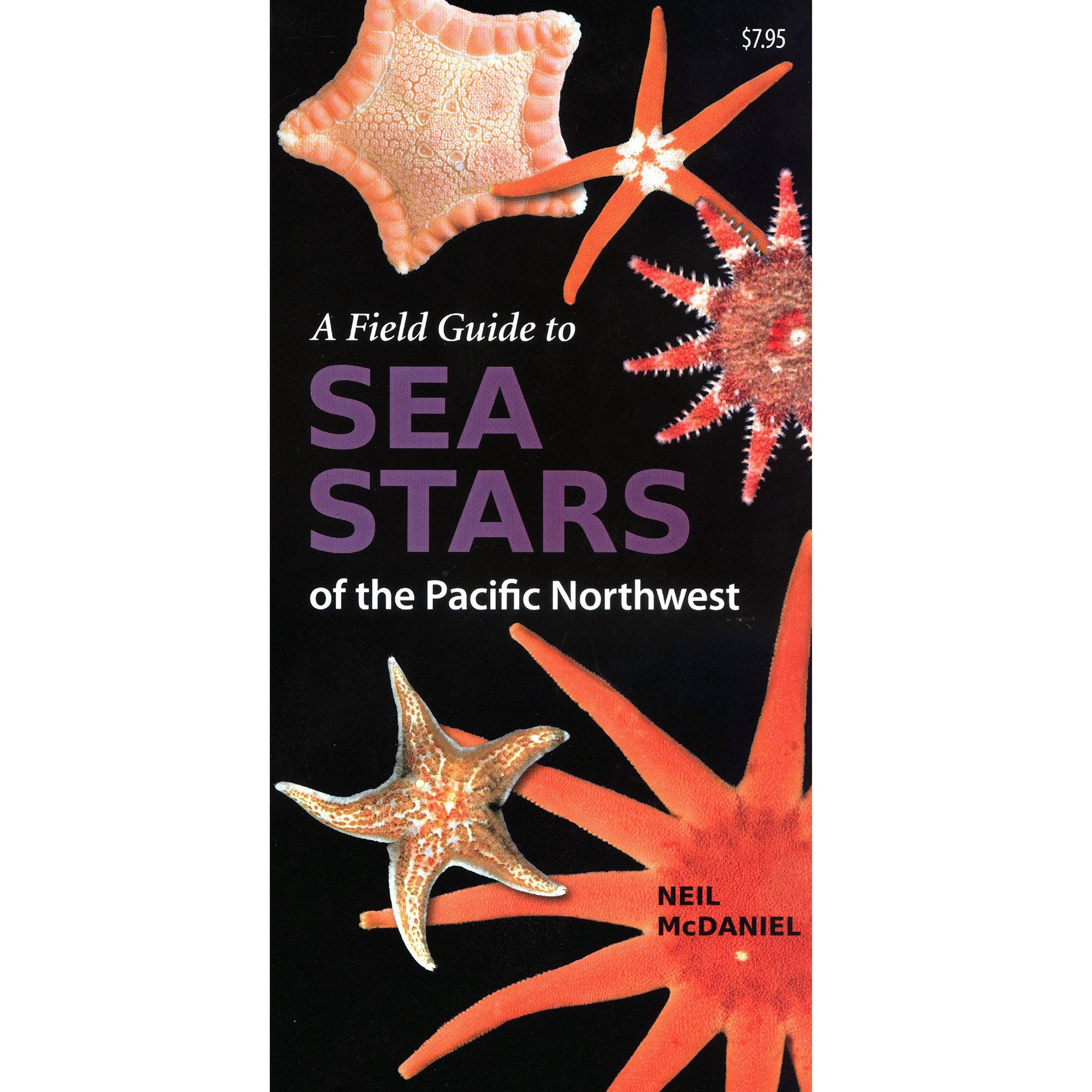 Field Guide to Sea Stars of PNW