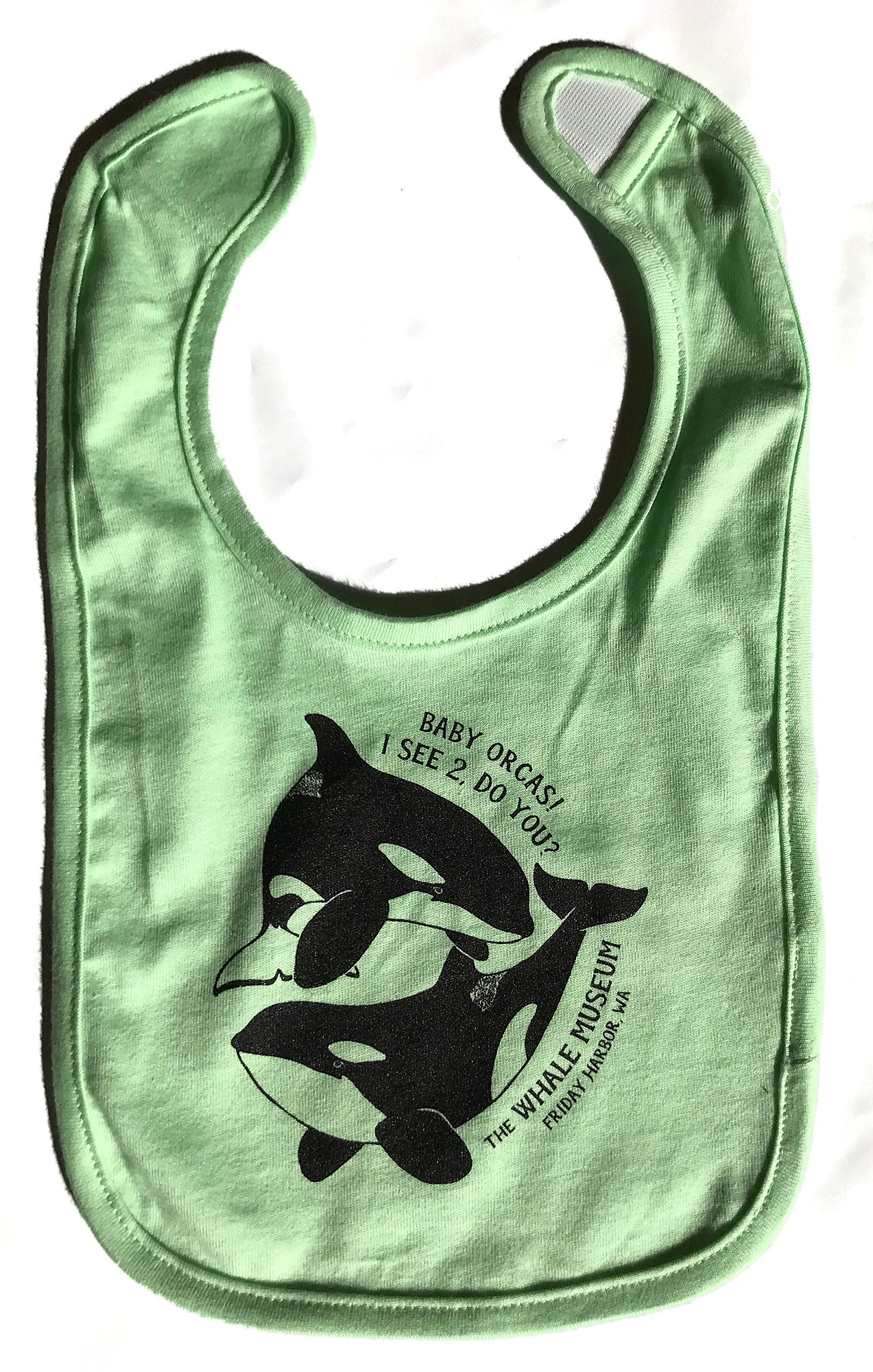 Baby Orcas! I see 2, do you? Bib