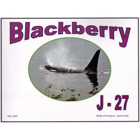 A Glimpse Into the Life of Blackberry J-27