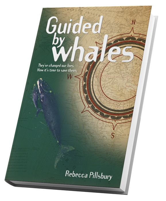 Guided by Whales