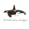The Whale Museum Note Card Series