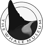 The Whale Museum
