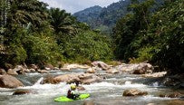 Tropical whitewater // Kayaker: Flo Hafner // Photo: Max Eberl