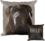 Load image into Gallery viewer, Pet Portrait Pillow