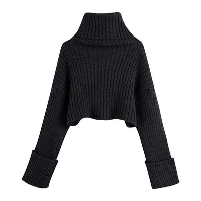 Classy Cropped Turtleneck Sweater