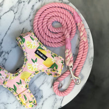 Load image into Gallery viewer, Cotton Candy Rope Lead