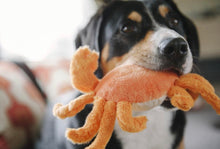 Load image into Gallery viewer, P.L.A.Y - King Crab Dog Toy