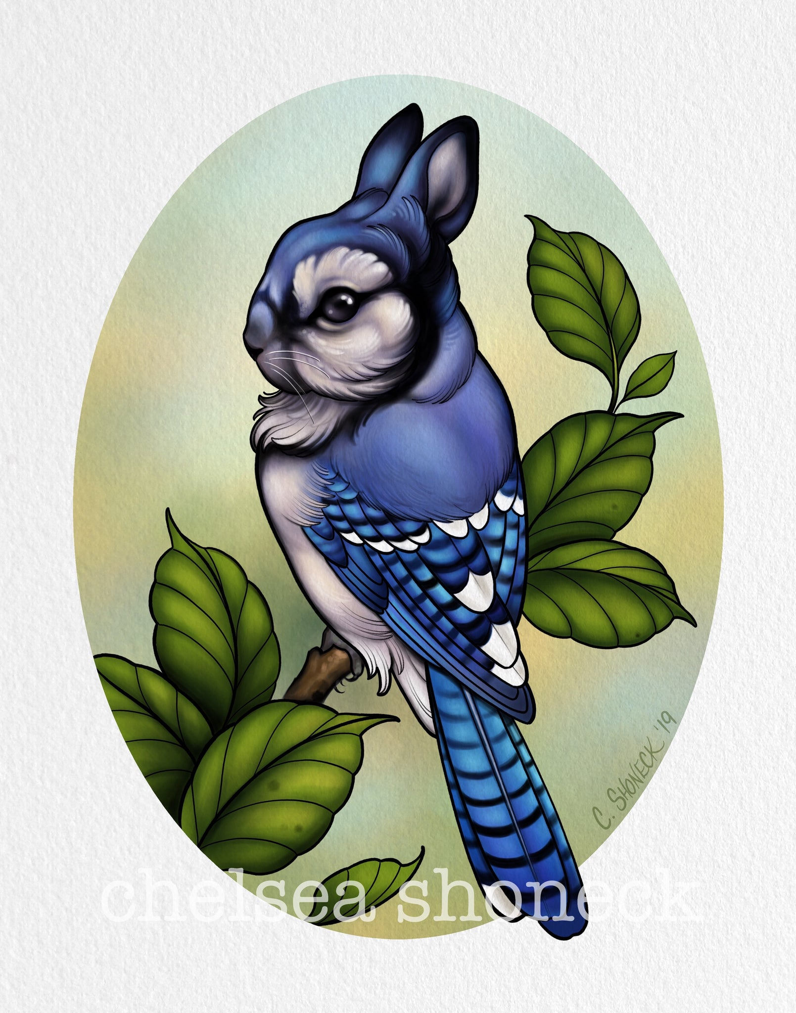 August Bunnybird - Blue Jay
