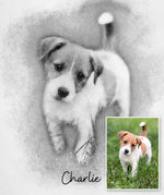 Load image into Gallery viewer, Custom Pet Portrait Art Print - Sketch - Extended Range