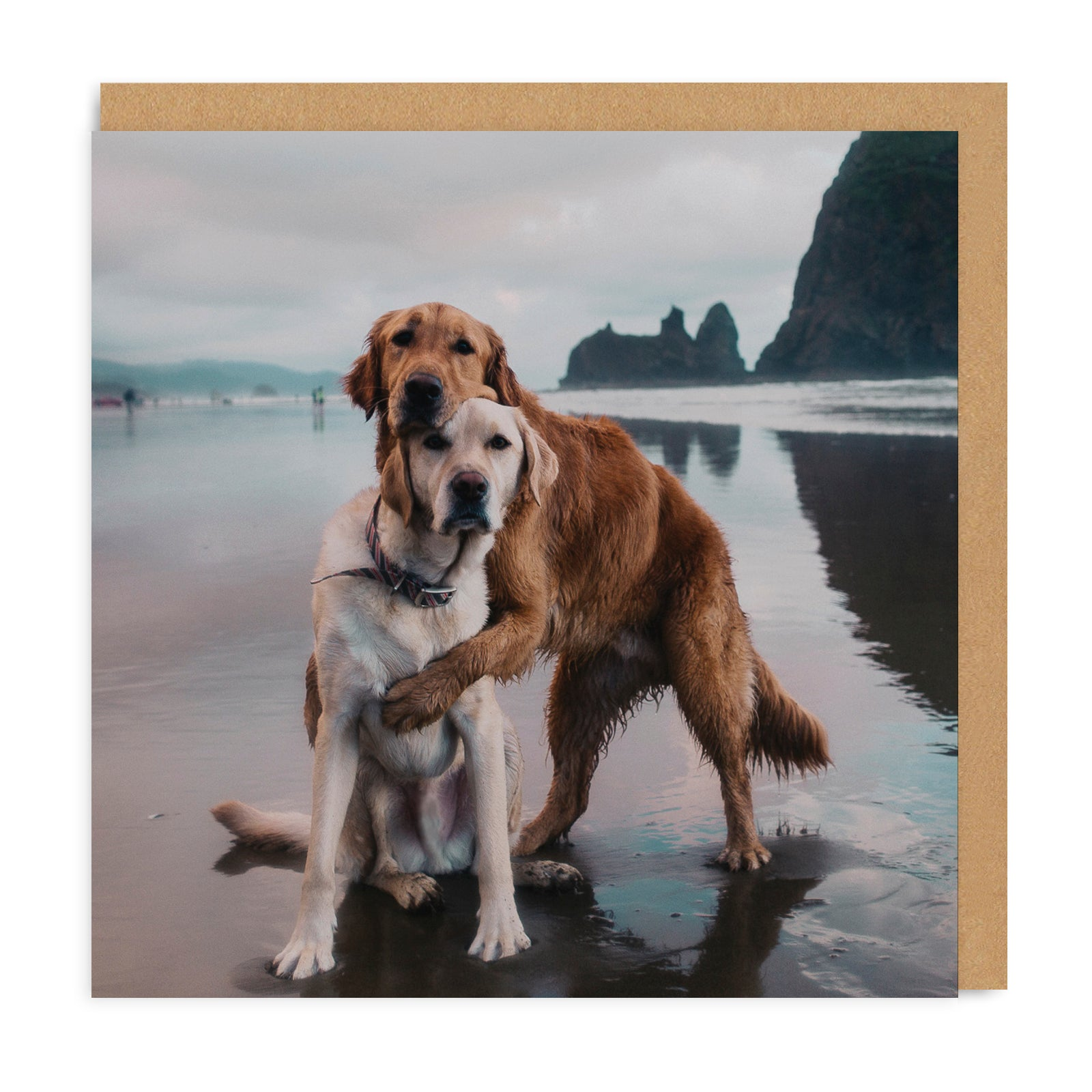 Beach Dogs Hug Square Greeting Card