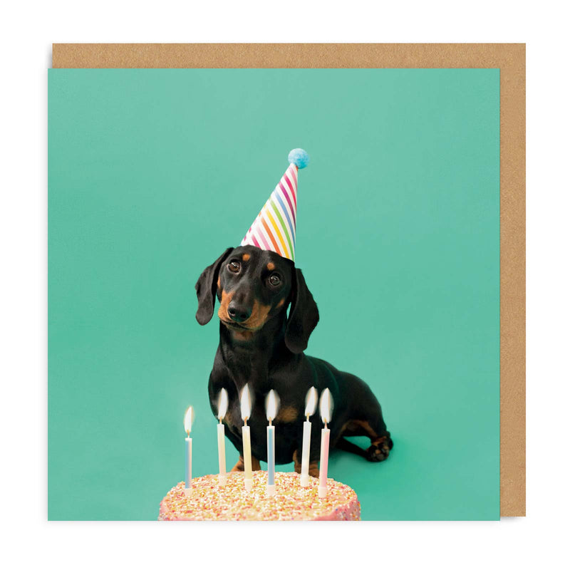 Scout Party Hat Square Greeting Card