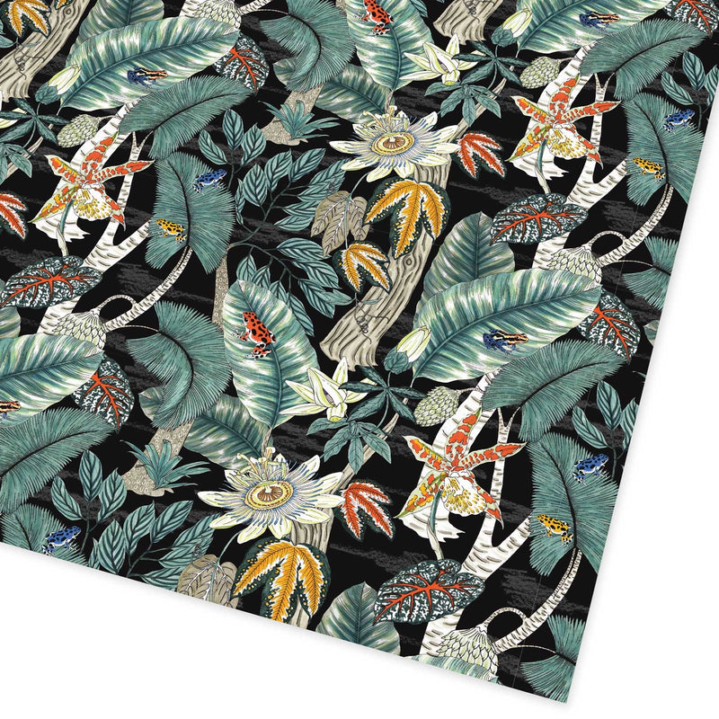 Rainforest Flat Giftwrap