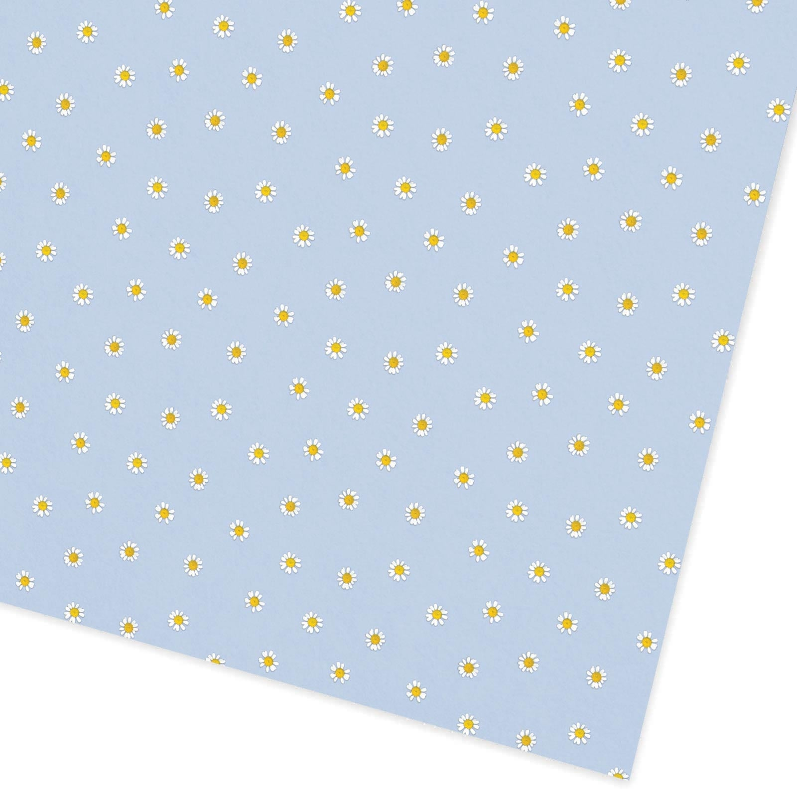 Blue Daisies Flat Giftwrap