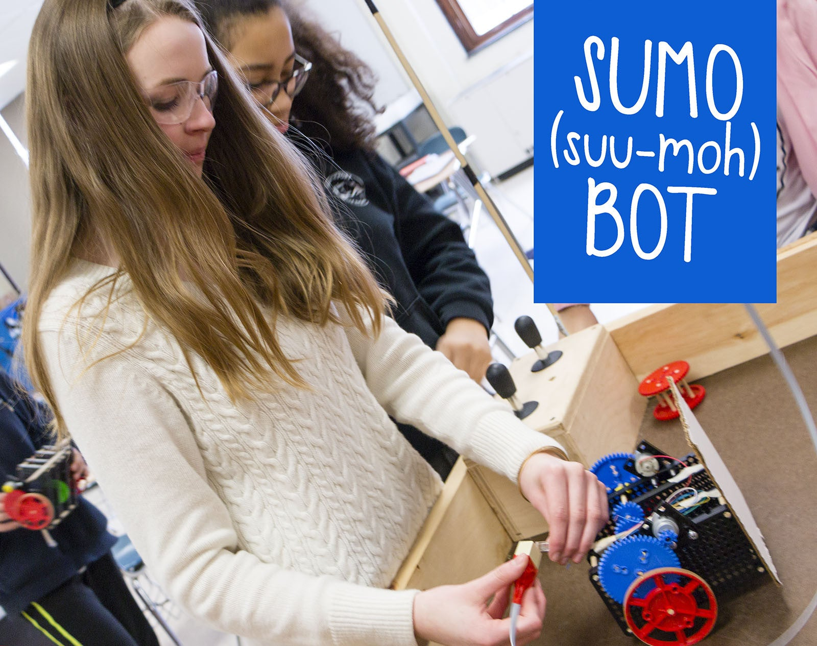 Sumo Bot Activity Documents