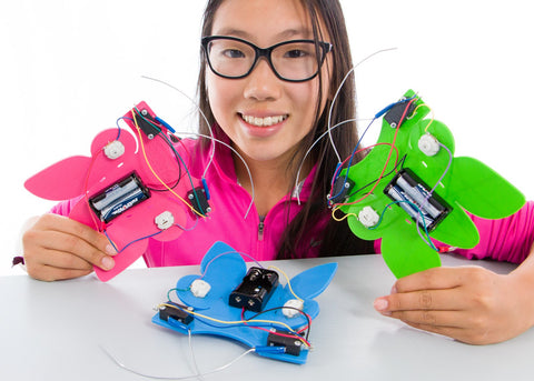 """Catch the Bug"" The Ultimate Electronics Activity"