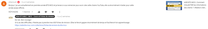 Youtube | Commentaire de Albanoush | AIDE BTS MCO