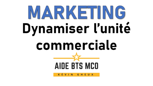 #31 Comment dynamiser un point de vente ? - Cours de MARKETING du BTS MCO