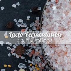 Lacto Fermentation Salts