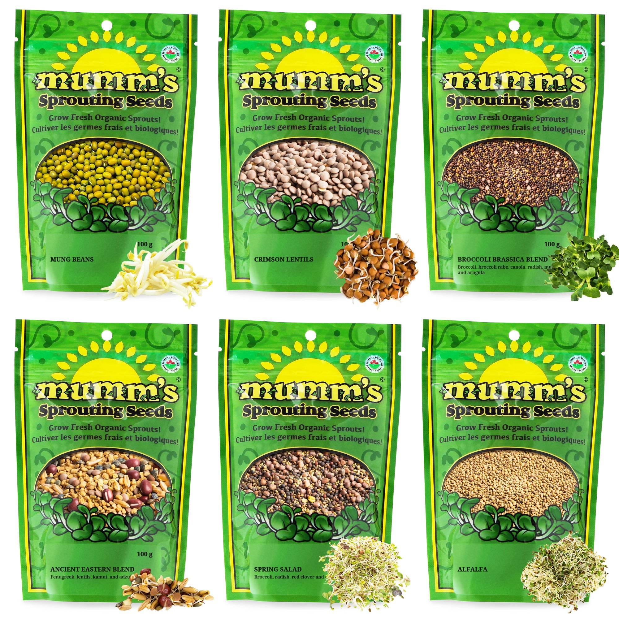 Mumm's Sprouting Seed Variety Packs