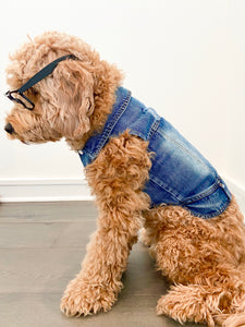 DENIM Dog Vest