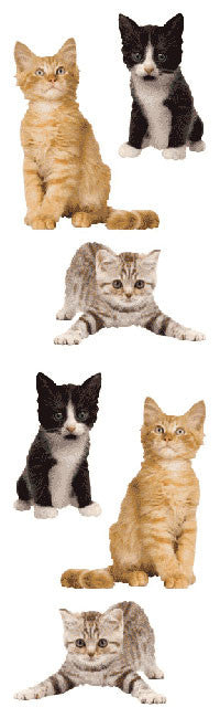 Adorable Kittens, sticker, Mrs. Grossman's Stickers