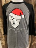 Riley's Santa Hat Baseball Tee